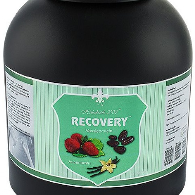 Recovery Gainer 2,7 Kg